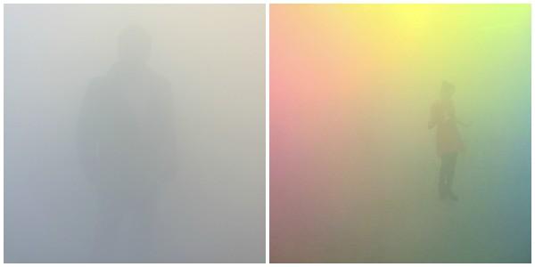 YBP Collage 01